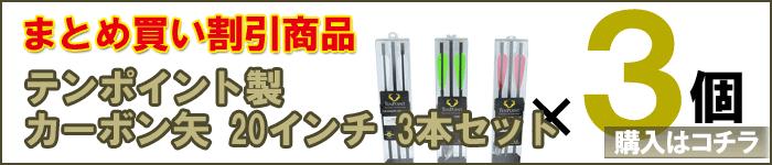 【まとめ買い割引】テンポイント社製カーボン矢20